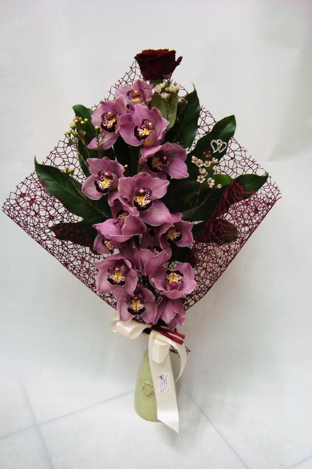 Al giardino di claudia e lara for Costo orchidea